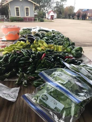 Little River County Farmers Market