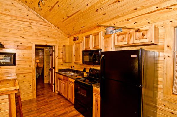 The Ozark Cabin