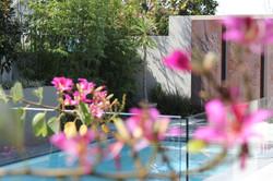 poolside landscaping, Floreat