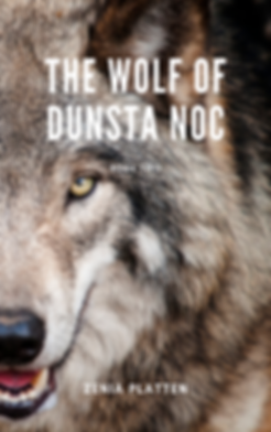 Wolf of Dunsta Noc Cover.png