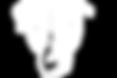 Dani Logo White1.png