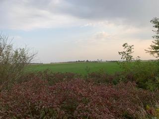 Farm beauty in Perth County