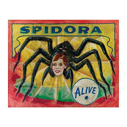 Spidora Sideshow Banner