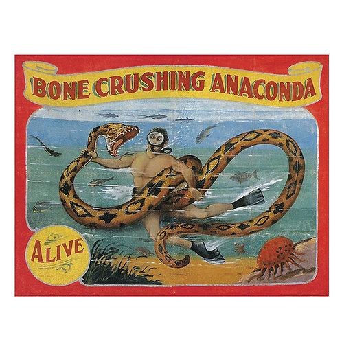 Bone Crushing Anaconda Sideshow Banner