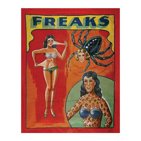 Freaks Sideshow Banner