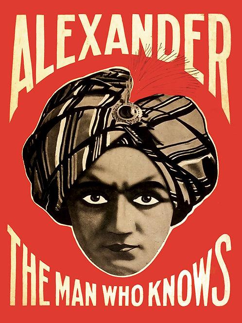 Alexander Vinyl Banner