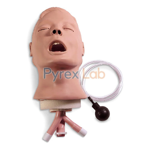 Electric Reachea Intubation Model