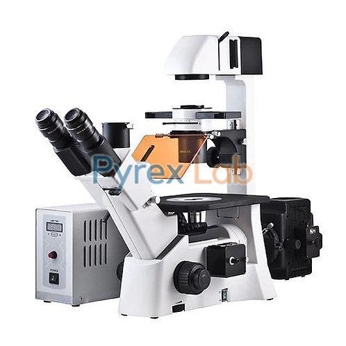Inverted Fluorescence Microscope