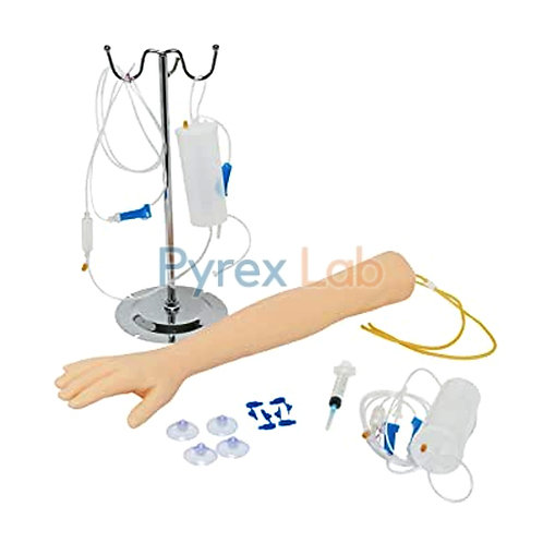 Multi-Functional Adult IV Training Arm Model