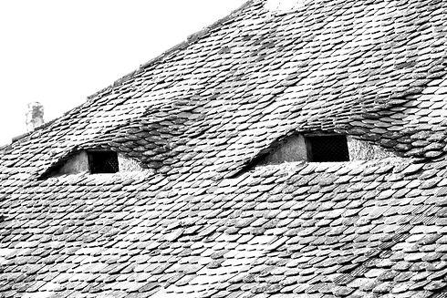 Sibiu%20eyes%20Shutter_edited.jpg