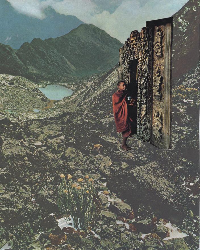 """""""magical mystery door"""""""