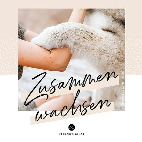 FG_ZW_Cover_Audio.jpeg