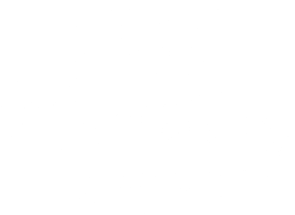 Start Marketing, Primary Logo, White.png