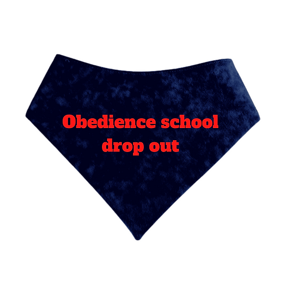 Obedience School Drop Out