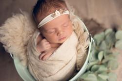 Photo bébé dans un seau