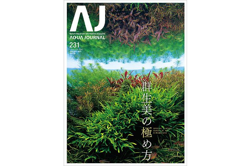 AJ231_01.jpg