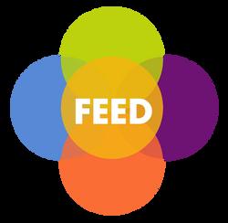 Circulo-FEED-con-letras-sin-Fondo
