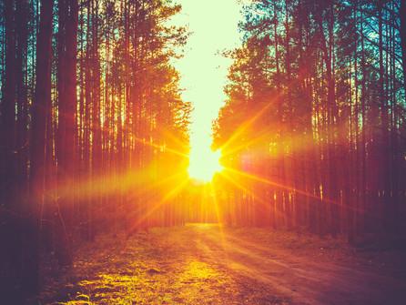 El Sol Que Siempre Ha Alumbrado Mi Camino Brilla Más Que Nunca Hoy