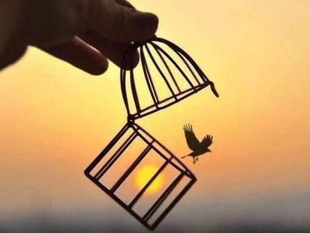 La libertad del Perdón