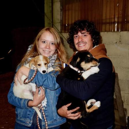 7 septembre 2019 : 53 chiens et 2 chats sauvés de Roumanie