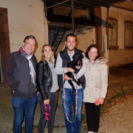 26 octobre 2019 : 43 chiens et 1 chats sauvés de Roumanie