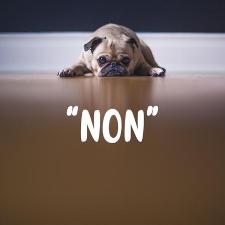 Par quoi le « non » peut-il être remplacé ?