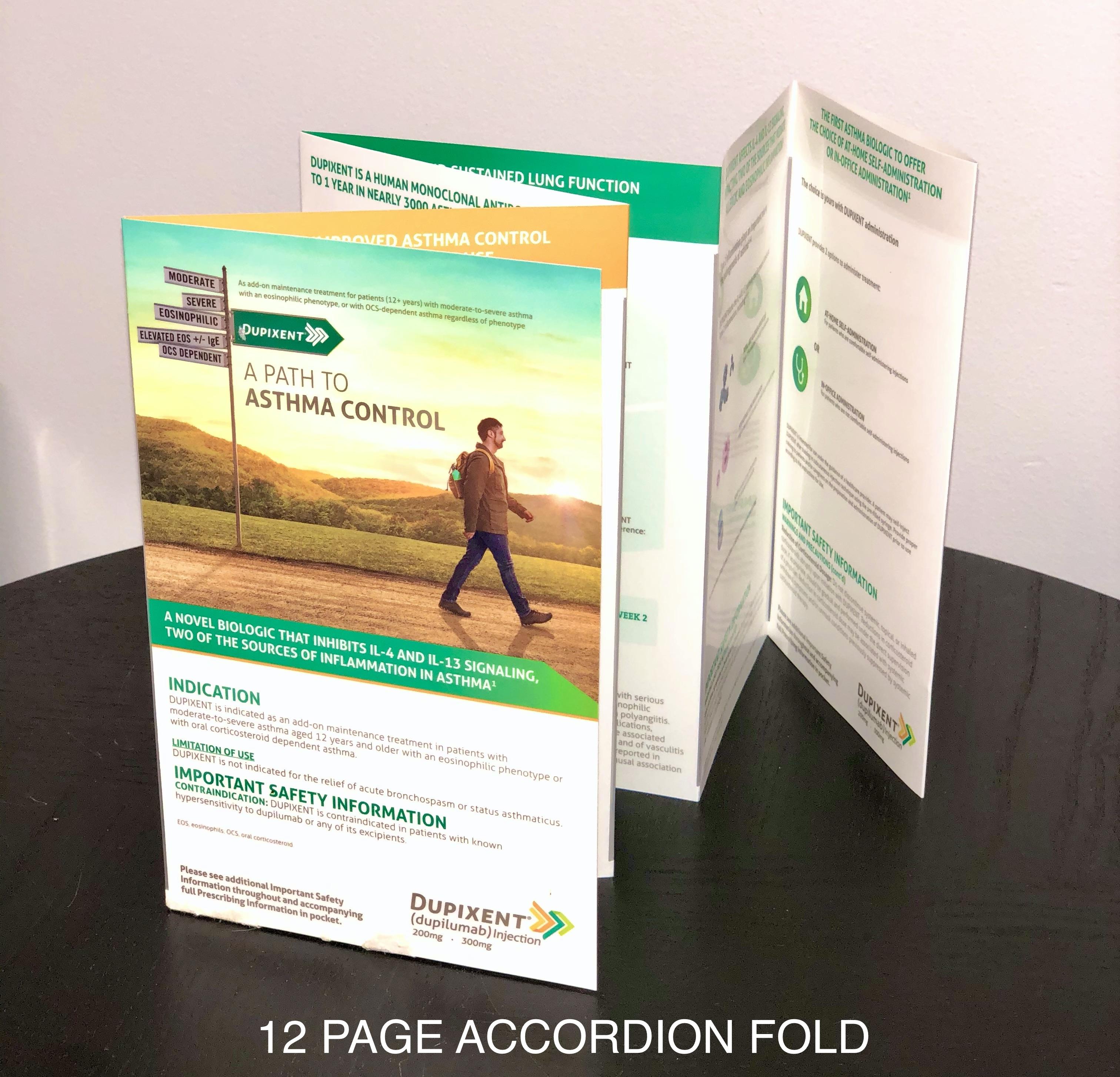 12 Panel Accordion Fold Brochure