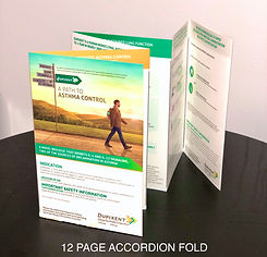 12 Panel Accordion Fold Brochure printin