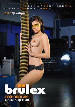 Календарь Brulex и Standox