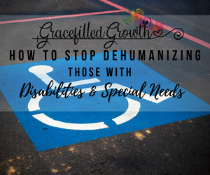 Special Needs Parenting. Advocate. How to stop dehumanizing those with disabilities and special needs. Ben's Adventures book.