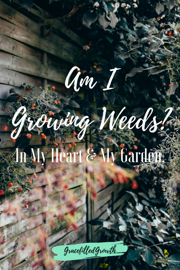 Am I growing weeds in my heart? And, if so, how do I get rid of the bad that is taking root?