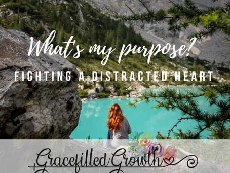 Finding My Life Purpose & Fighting a Distracted Heart