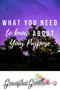 What's my purpose? Finding purpose. Made for more. Am I made fore more than this?