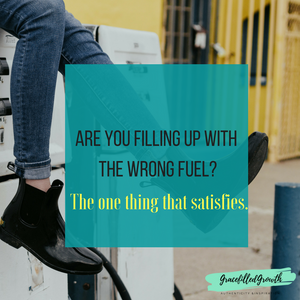 Are you running on empty? Looking for that one thing that can refresh your spirit? Here's the one thing that truly satisfies.