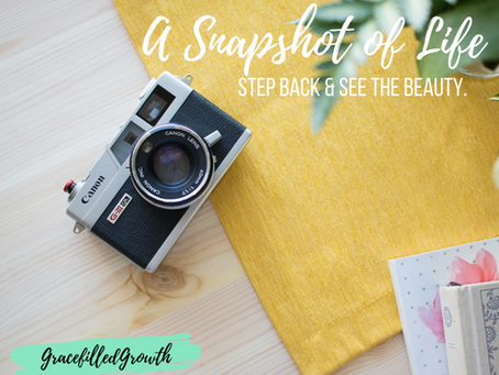 A Snapshot of Life: Stepping Back to See Beauty