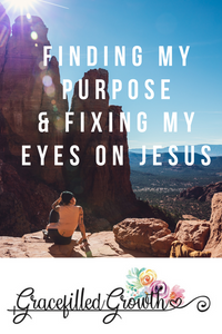 Finding my life purpose. What's my purpose? Finding my purpose. Fixing my eyes on Jesus. Fighting a distracted heart.