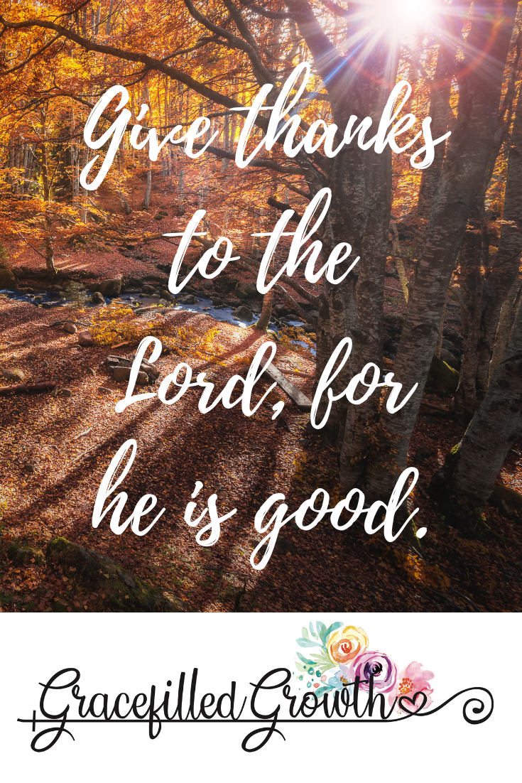 Bible verses about thankfulness. Give thanks. Scripture about thanksgiving. What does God say about Gratitude. God's Word. Be grateful.
