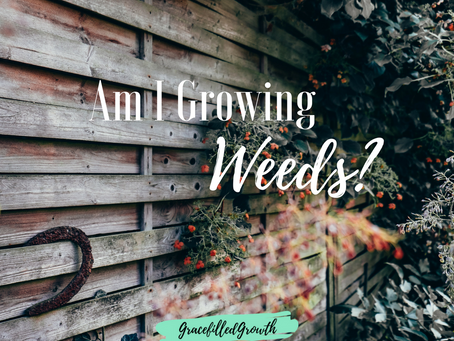 Am I Growing Weeds In My Heart?
