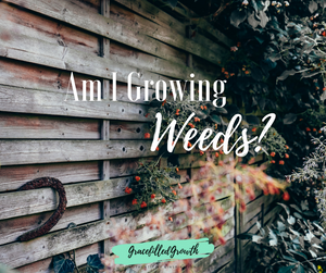 Am I growing weeds in my heart? And, if so, what can I do to get rid of the bad that's taking root?