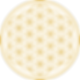 flower-of-life-2648527_960_720.png