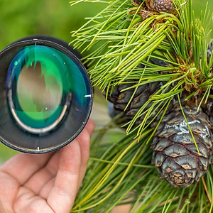Anamorphic lens 1,45x fc gr wide