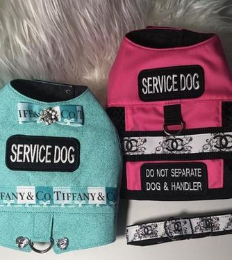 service dog designer dog vest.jpg