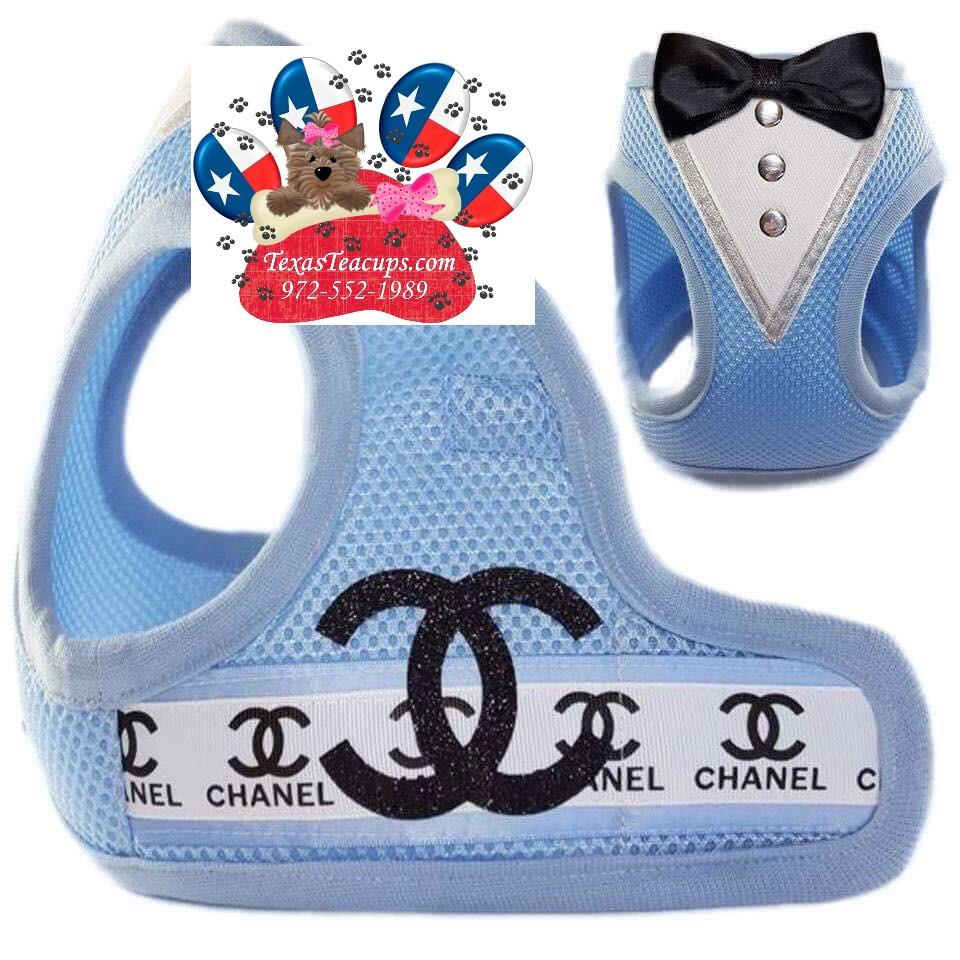 Luxury Dog Harness.jpg