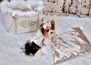 Luxury pet carrier 1.jpg