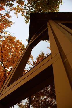 DSC06451_adj.thumbnail.jpg