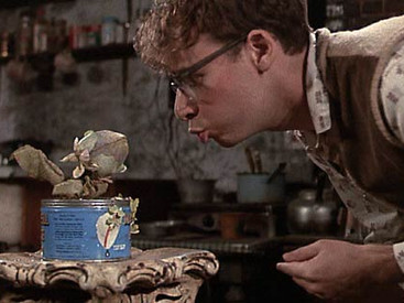 Little Shop of Horrors: Suddenly See More