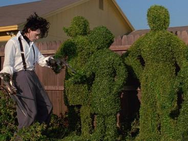 Edward Scissorhands: And I Will Bring the Ambrosia Salad