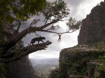 BaeBae's Top 5 Movies of 2016