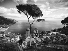 Ravello - Villa Ruffolo Pine