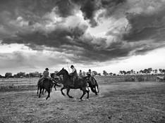 Maremma - Italian Cowboy